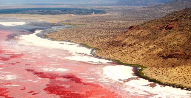 El lago Natron, aguas rojas momificadoras