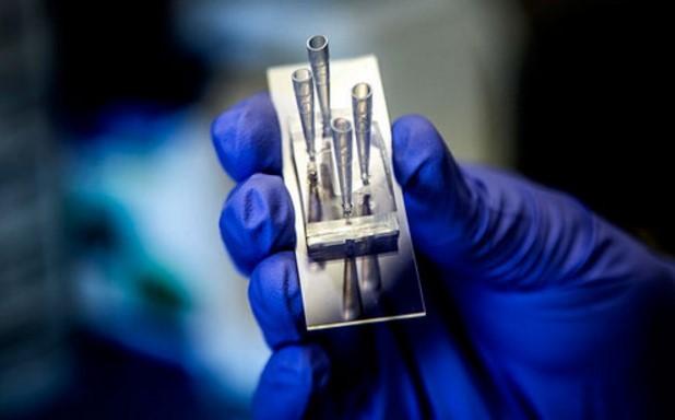 El microchip que es capaz de simular un riñon